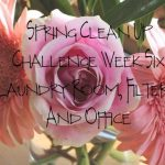 Spring Clean Up Challenge Week Six…Laundry Room, Filters And Anything We Missed